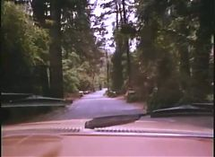 Intimate Illusions 1978